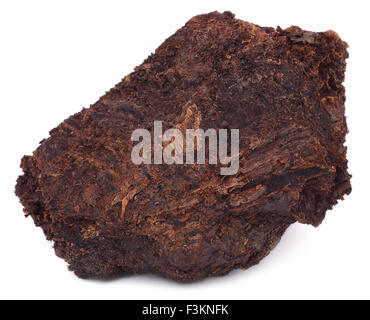 Close up of peat block over white background - Stock Photo