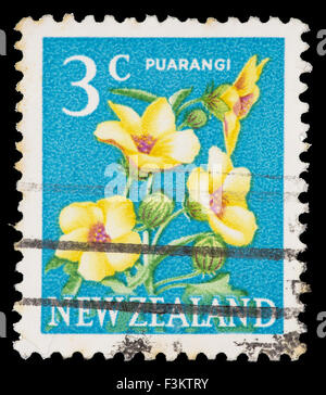 NEW ZEALAND - CIRCA 1967: A postage stamp printed in New Zealand shows a Puarangi flower, Hibiscus richardsonii, - Stock Photo