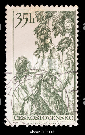 CZECHOSLOVAKIA - CIRCA 1956: A postage stamp printed in Czechoslovakia shows hop plukkers - Stock Photo