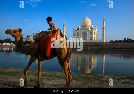Agra, Uttar Pradesh, India. Camel and Indian boy beside the river at the Taj Mahal in Agra. An Indian boy with his - Stock Photo