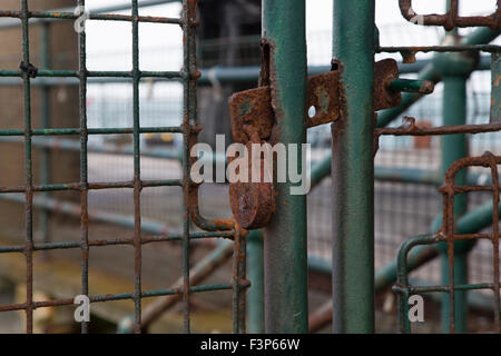 Rusty padlock on an old green rusting metal gate - Stock Photo