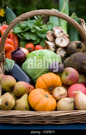 Harvest basket containing a selection of UK grown fruit and vegetables. - Stock Photo