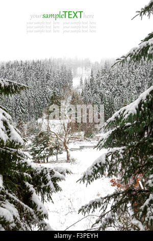 Snow covered fir trees in mountains. - Stock Photo