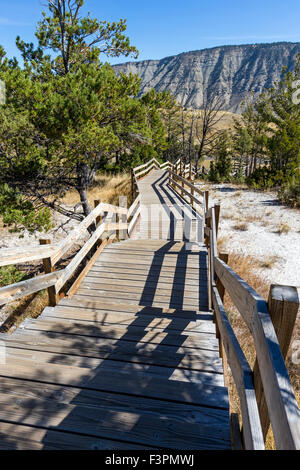 Boardwalk; Mammoth Hot Springs; Yellowstone National Park; Wyoming; USA - Stock Photo