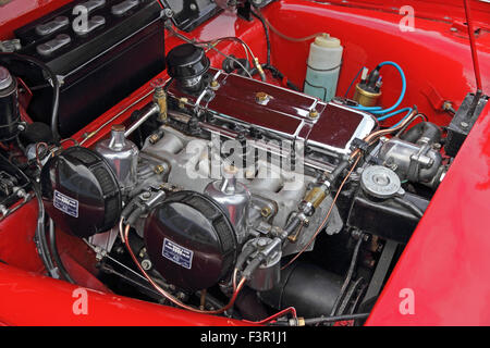 Engine compartment of red 1962 Triumph TR3 sports car - Stock Photo