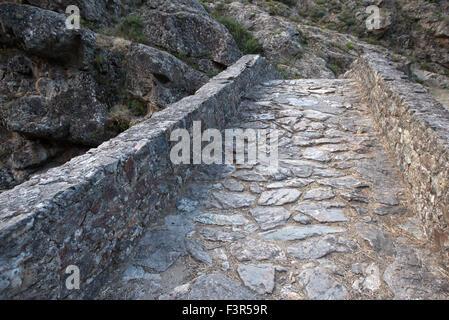 Genoese bridge, near Asco, Corsica, France