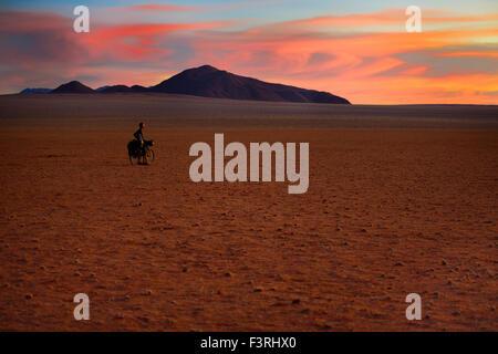 Cycling in the Namib desert, Namibia, Afrika - Stock Photo
