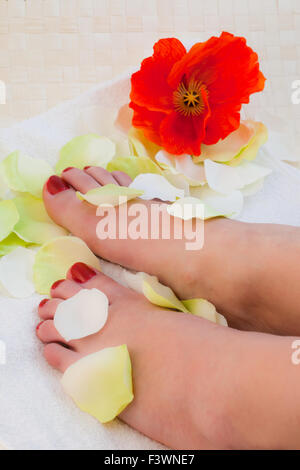 Woman taking care of her feet - Stock Photo