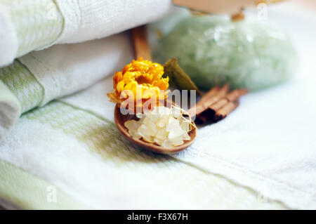 Aromatic spa set with sea salt and plants - Stock Photo