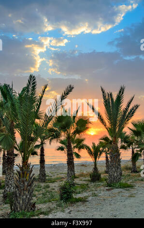 Sunset over palm beach - Stock Photo