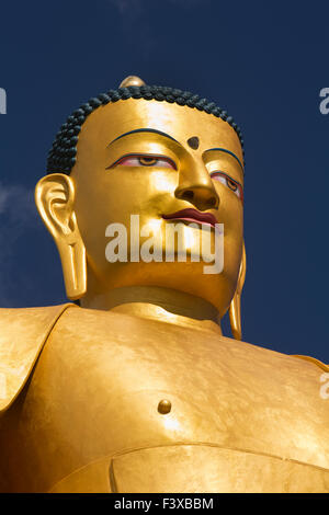 India, Jammu & Kashmir, Ladakh, Stok gompa, head of newly constructed large seated golden Buddha statue - Stock Photo