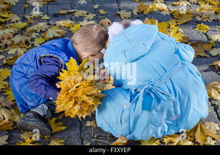 Young Children Gathering Autumn Leaves - Stock Photo