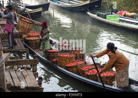 Farmers unload tomatoes, Nyaung Shwe, Myanmar - Stock Photo