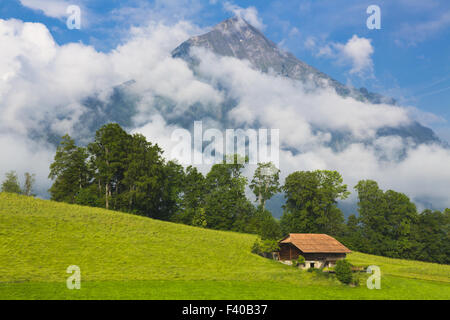 summer landscape with mountain on background - Stock Photo