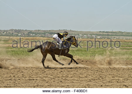 Jockey riding a horse during horse racese - Stock Photo
