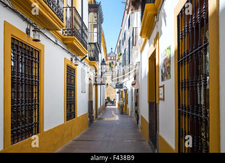 Spain, Cordoba, traditional houses in the Calle de los Banos Basso near the Cathedral - Stock Photo