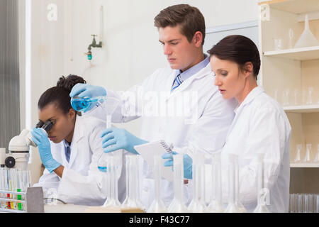 Scientists doing experimentations - Stock Photo