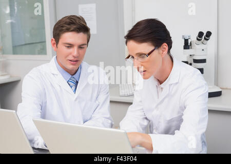 Scientists working attentively with laptop - Stock Photo
