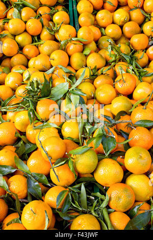 A background of fresh clementines with green leaves on a market - Stock Photo