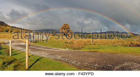 A panoramic image of an afternoon rainbow over a meadow in the Scottish highlands. - Stock Photo