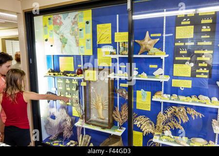 Florida, FL, South, Keys, highway Route 1 Overseas Highway, Bahia Honda State Park, Key, exhibit exhibits exhibition - Stock Photo