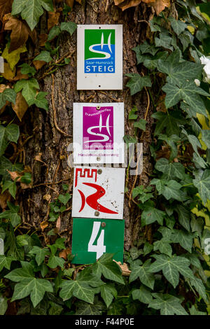 UNESCO Upper Middle Rhine Valley, various signs on hiking trails in the Rheingau on a tree - Stock Photo