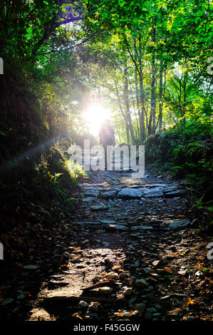 Pilgrim hiking through the woods before O Cebreiro on the Way of Saint James (Camino de Santiago), Castile and León, - Stock Photo