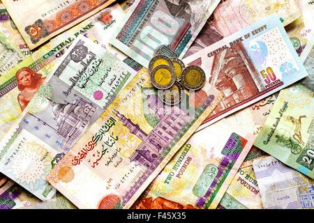 Egyptian pounds - Stock Photo