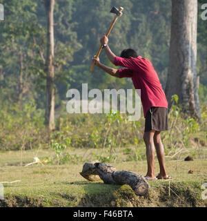 Tharu nepali man chopping wood in Bardia, Nepal - Stock Photo