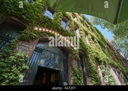 Grand Central Arcade entrance covered in Virginia Creeper - Stock Photo