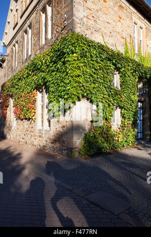 traditional corner house covered in ivy - Stock Photo