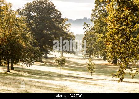 Dundee, Tayside, Scotland, UK, 15th October 2015. UK Weather: Frosty autumn morning sunshine in Dundee. Thick freezing - Stock Photo