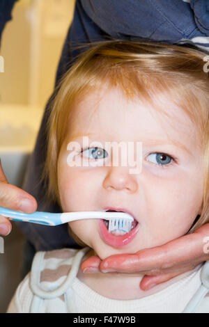 Child / baby having her milk teeth brushed with a toothbrush / tooth brush - by her mother. - Stock Photo