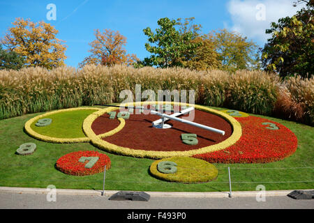 flower clock jardin anglais english garden geneva switzerland stock photo royalty free. Black Bedroom Furniture Sets. Home Design Ideas