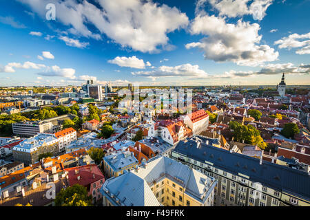 View of the Old Town from St. Olaf's Church Tower, in Tallinn, Estonia. - Stock Photo