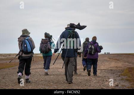 Southport, Merseyside, UK 16th October, 2015. Elderly, seniors Birdwatchers, using a spotting scope, telescope, - Stock Photo