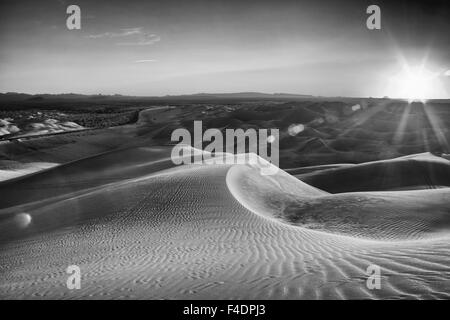 Sunrise over a stark black and white desert landscape, sand with waves of texture In the Imperial Sand Dunes near - Stock Photo