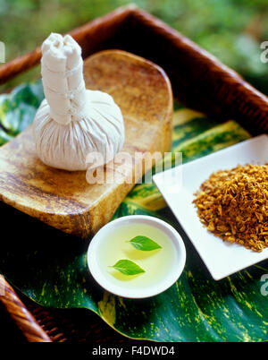 Ingredients for a hot poultice massage. Basil leaves in grape seed oil, and poultice.Riviera Maya,Yucatan,Mexico. - Stock Photo