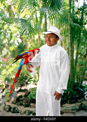 A Mexican staff member holds a Macaw parrot before its feeding time at Maroma Spa and Resort. Riviera Maya,Yucatan,Mexico - Stock Photo