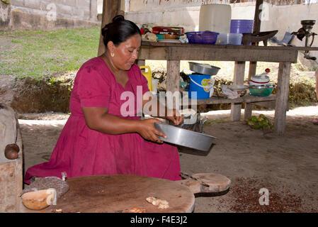 Belize, Toledo, Punta Gorda, Village of Columbia. Agouti Cacao Farm. Demonstration of traditional way to process - Stock Photo