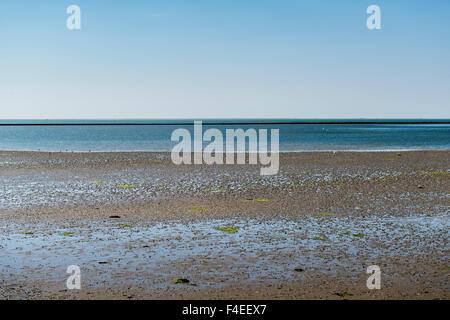 4 July, 2014  Gezicht op de Waddenzee. View on the Wadden sea, mudflats galore.  Photo Kees Metselaar - Stock Photo
