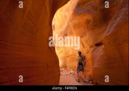 Hiking in slot canyon, Buckskin Gulch, Paria Canyon- Vermillion Cliffs Wilderness Area, Vermillion Cliffs National - Stock Photo