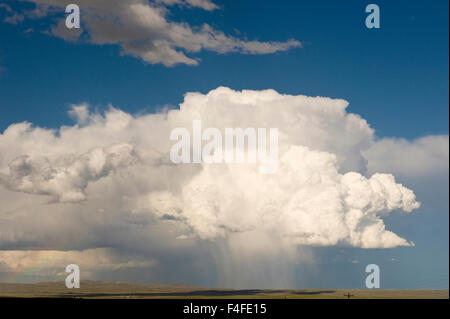 Cumulus clouds and virga hitting the ground (observable streak or shaft of precipitation that falls from a cloud) - Stock Photo