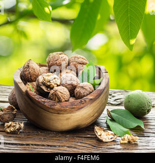 Walnuts in the wooden bowl on the table under the walnut tree. - Stock Photo
