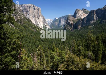 View into Yosemite Valley from Tunnel View, El Capitan left, Yosemite National Park, California, USA - Stock Photo