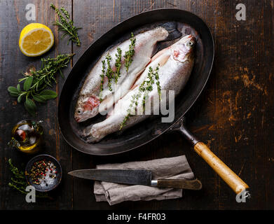 Raw uncooked Trout fish with spices and herbs on pan on dark wooden background - Stock Photo