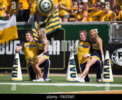 Waco, Texas, USA. 17th Oct, 2015. West Virginia Mountaineers cheerleaders during the NCAA football game between the West Virginia Mountaineers and Baylor Bears at McLane Stadium in Waco, Texas. JP Waldron/Cal Sport Media/Alamy Live News Stock Photo