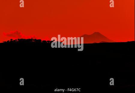 llaima volcano, araucania region, chile - Stock Photo