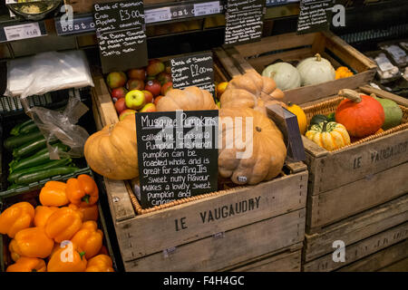 Musquee De Provence crates, harvest varieties of edible orange winter squash, white & green coloured pumpkins in - Stock Photo