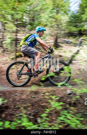 Mountain bike rider on Little Rainbow Trail, near Bear Creek, Salida, Colorado, USA - Stock Photo